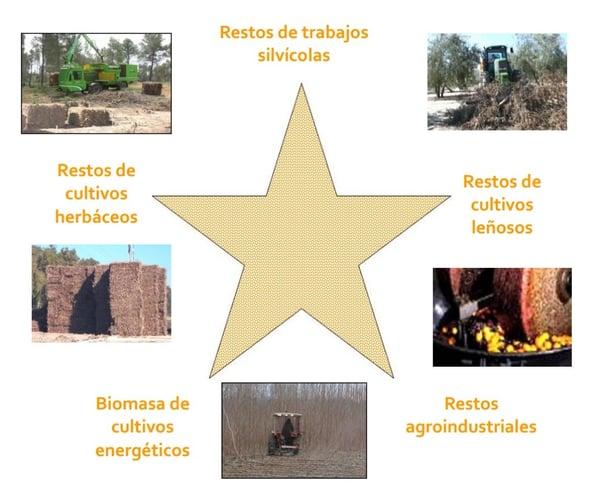 Biomasa2