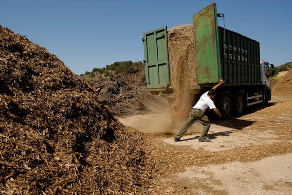 Biomasa5