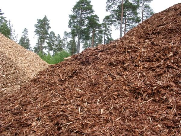biomasa conbustibles