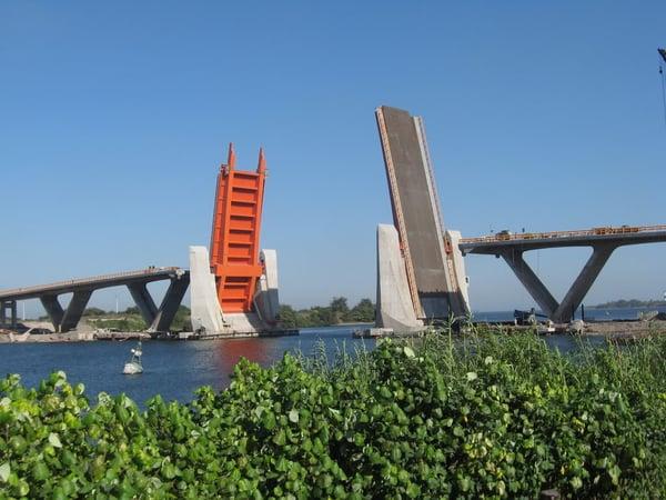 puentealbatros