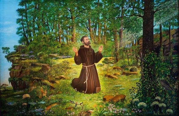 san francisco de asis en bosque fondo