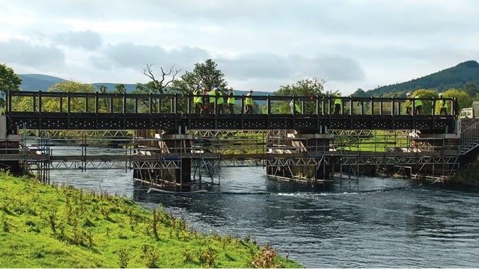 Puente Easter Dawyck
