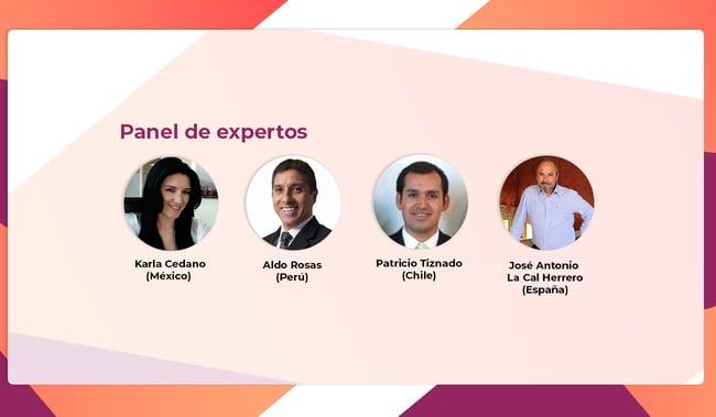 panel de expertos, renovables