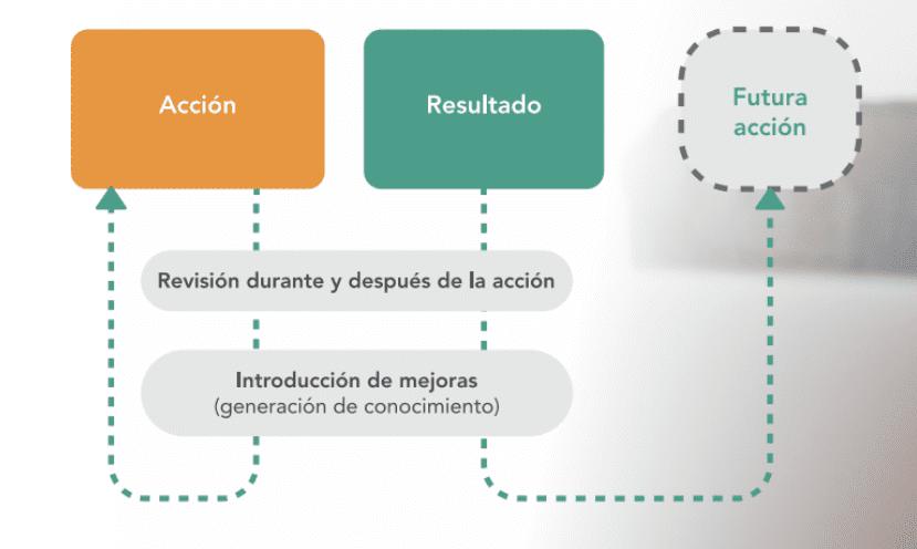 seguimiento-de-proyectos-revision