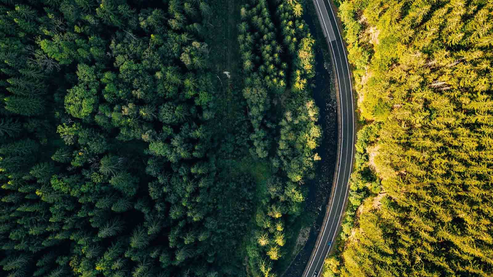 Los proyectos de ingeniería y su impacto en el medio ambiente
